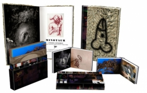 Pixies: Minotaur box set